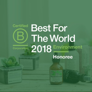 DAV-BCorp-Bestfortheworld